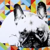 Bullee, 50x70 cm, akryl na płótnie, 2015 r. NIEDOSTĘPNY
