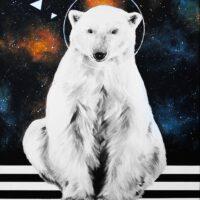 gwiazda-polarna-100×70-FB